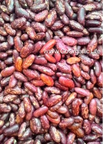 Pajma (Kidney Beans)