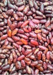 Rajma (Kidney Beans) 500g