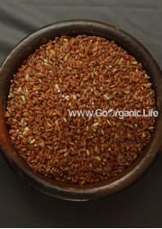 Kari jidda - Red Rice / करी जिड्डा  लाल चावल / சிகப்பு அரிசி கரி ஜிட்டா (1Kg)