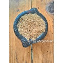 Barnyard Millet Boiled / झंगोरा - उसना /குதிரைவாலி புழுங்கல் (1kg))