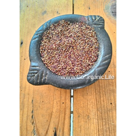 Finger Millet / मंडुआ / கேழ்வரகு (1kg)