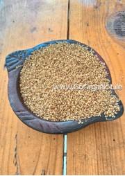 Little millet - Boiled / कुटकी- उसना / சாமை புழுங்கல் (1Kg))