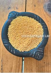 Foxtail millet /  कँगनी / திணை (1Kg)