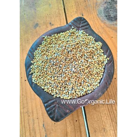 Pearl millet / बाजरा / கம்பு (1kg)