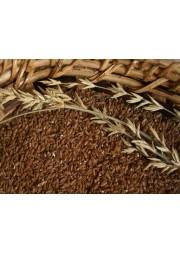 Bamboo Rice  / बांस चावल/ மூங்கில் அரிசி (1Kg)